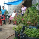 This garden helps feed Charo's family.