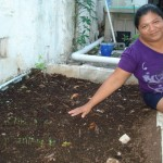 Just five days after planting radish seeds in her new garden bed, Lupe has sprouts. !Qué milagro! (What a miracle.)